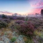 Kleurrijke zonsopkomst bij het Klein Hasselsven